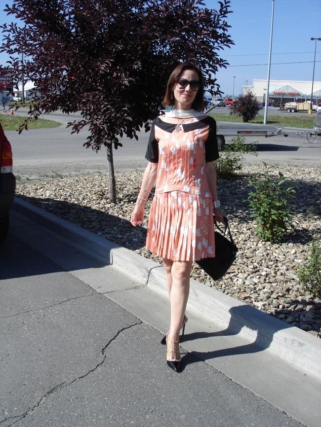#over40 VB pleated cat dress | High Latitude Style | http://www.highlatitudestyle.com