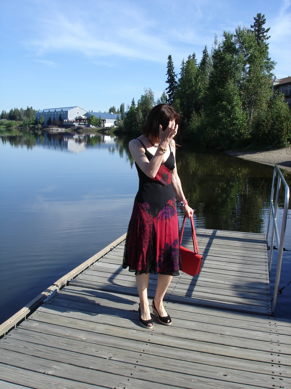 #over40fashion picnic summer dress | High Latitude Style | http://wp.me/p3FTnC-3f8