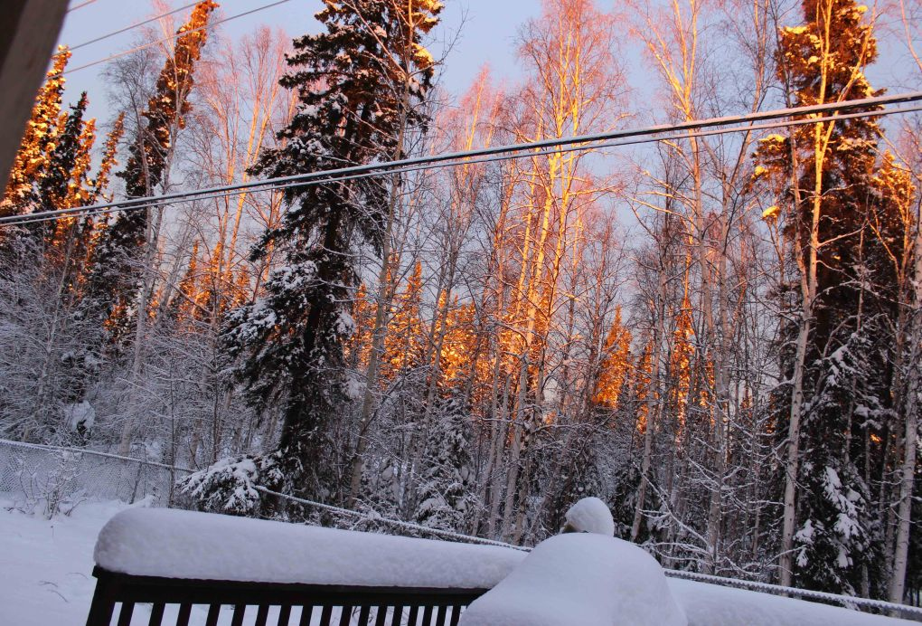 #Alaska photo of Alaska's blush pink winter skies